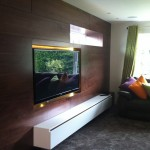 walnut wall with inset TV